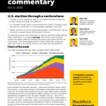 U.S. election through a sectoral lens