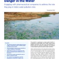 Danger in the Water