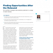Finding Opportunities After the Rebound