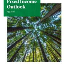 Fixed Income Outlook – Q4 2020