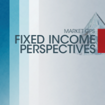 Fixed Income Perspectives