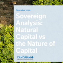 Sovereign Analysis: Natural Capital vs the Nature of Capital