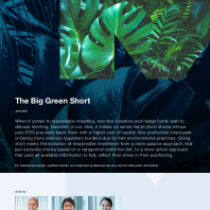 The Big Green Short