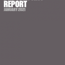 Expert Investor Participant Report January 2021