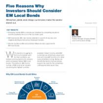Five Reasons Why Investors Should Consider EM Local Bonds