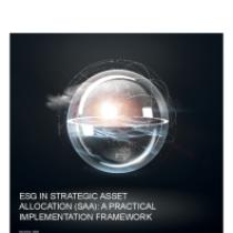 ESG in Strategic Asset Allocation