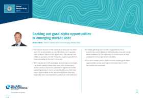 Seeking out good alpha opportunities in emerging market debt
