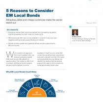 5 Reasons to Consider EM Local Bonds