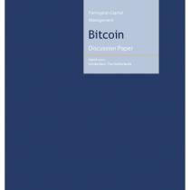 Bitcoin Discussion Paper