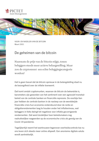 voordelen en nadelen van bitcoin