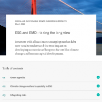 ESG and EMD – taking the long view