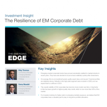 The Resilience of EM Corporate Debt