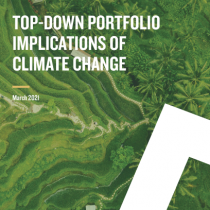 Top-Down Portfolio Implications of Climate Change