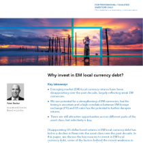 Why invest in EM local currency debt?