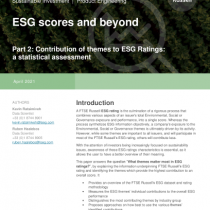ESG scores and beyond