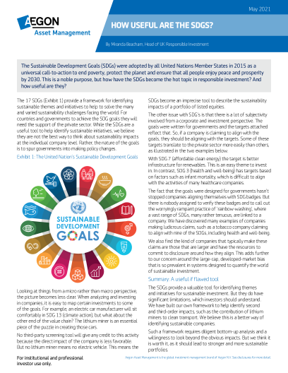 How useful are the SDGs?