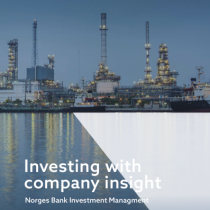 Investing with company insight