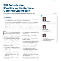 PULSe Indicator: Stability on the Surface, Currents Underneath