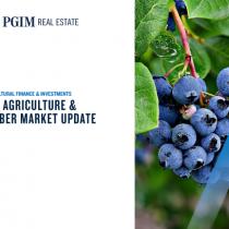U.S. Agriculture & Timber Market Update