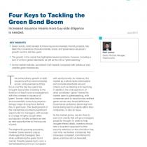 Four Keys to Tackling the Green Bond Boom