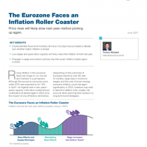 The Eurozone Faces an Inflation Roller Coaster