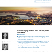Why emerging markets local currency debt in 4 charts