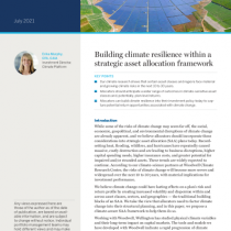 Building climate resilience within a strategic asset allocation framework