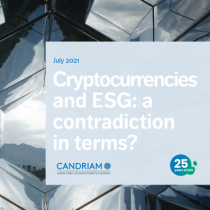 Cryptocurrencies and ESG: a contradiction in terms?