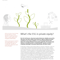 What's the ESG in private equity?