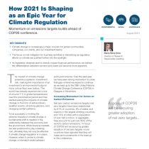 How 2021 Is Shaping as an Epic Year for Climate Regulation