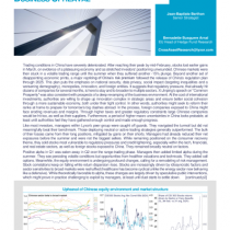 LS China through regulatory and businessupheaval