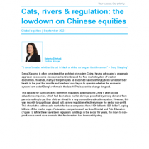 Cats, rivers & regulation: the lowdown on Chinese equities