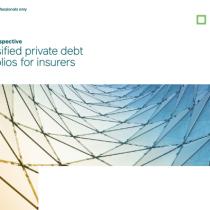 Diversified private debt  portfolios for insurers