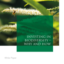 Investing in biodiversity – Why and How