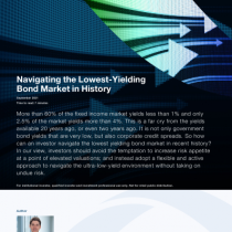 Navigating the Lowest-Yielding Bond Market in History